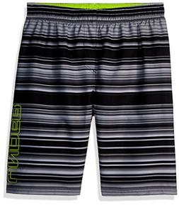 Under Armour Boys' Big Volley Fashion Swim Short, Black Stri