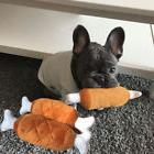 1x Pet Dog Puppy Toys Chicken Legs Design Small Dogs Chew Sq